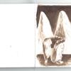 libreta-apuntes-heiler-12.jpg